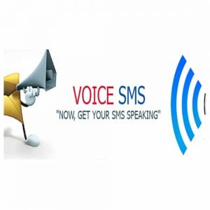 C2sms-Voice-sms-Service-Provider