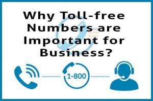 Why-Toll-free-numbers-are-Important-for-business